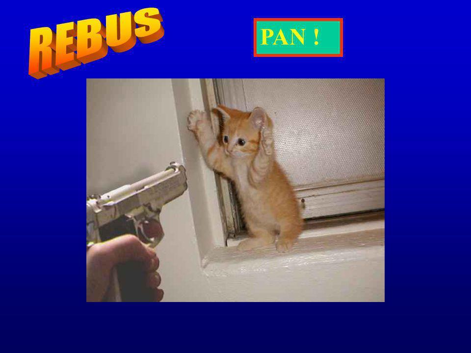 REBUS PAN !