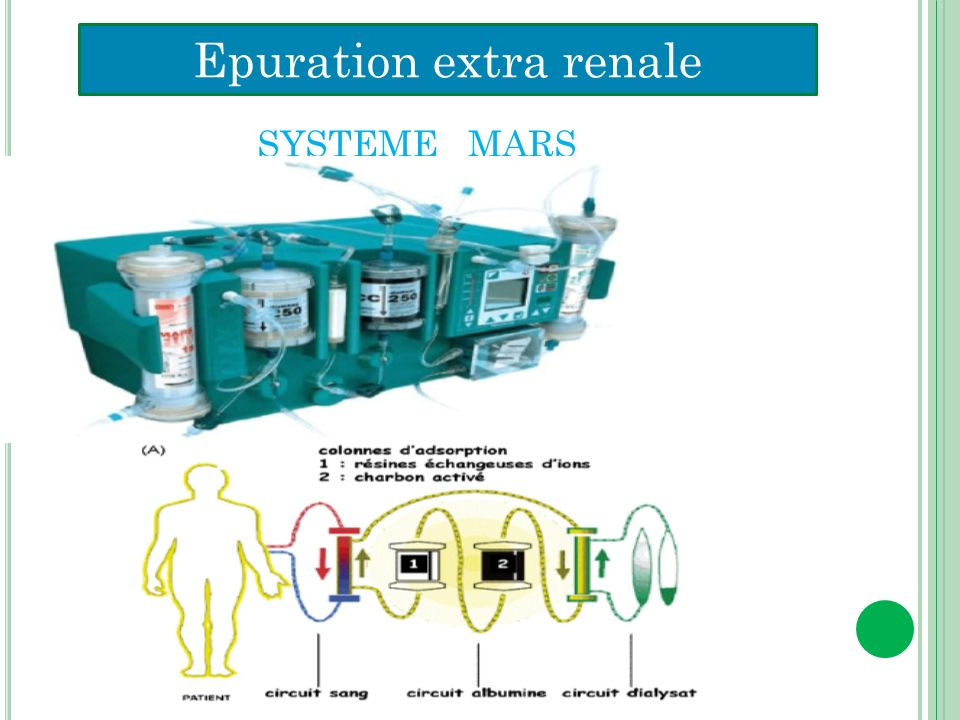 Epuration extra renale