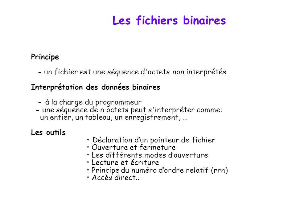 Les fichiers binaires Principe