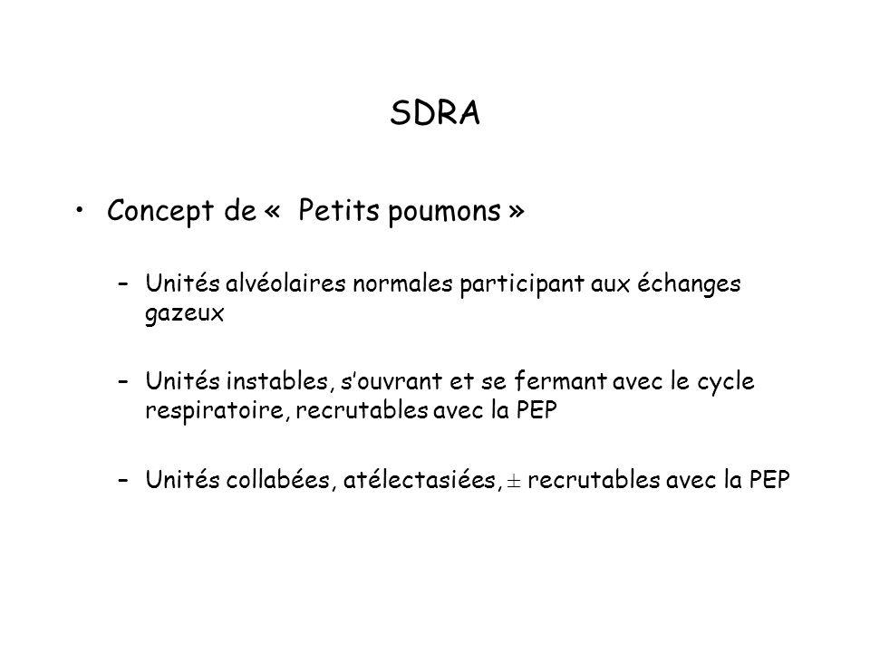 SDRA Concept de « Petits poumons »