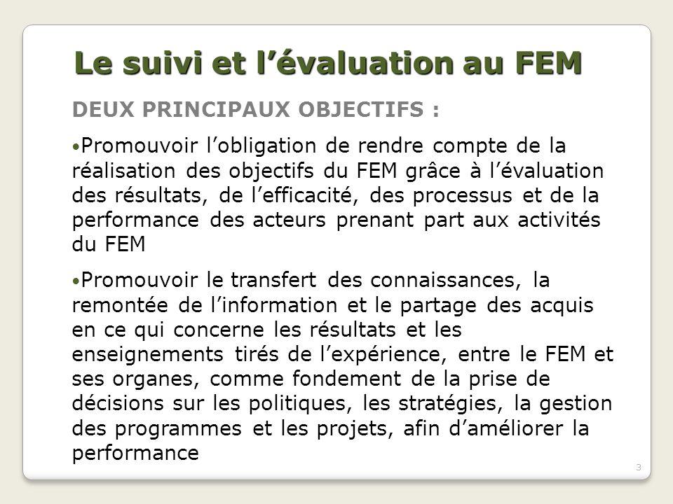 Le suivi et l'évaluation au FEM