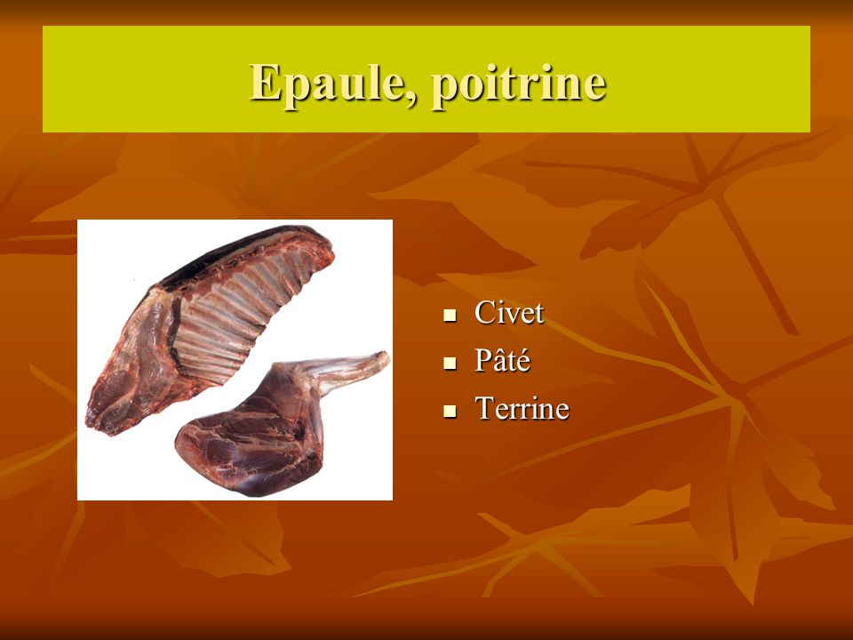 Epaule, poitrine Civet Pâté Terrine