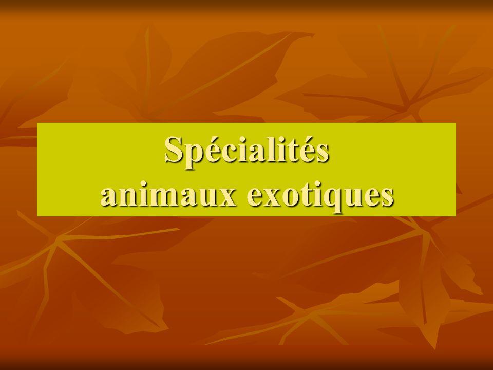 Spécialités animaux exotiques