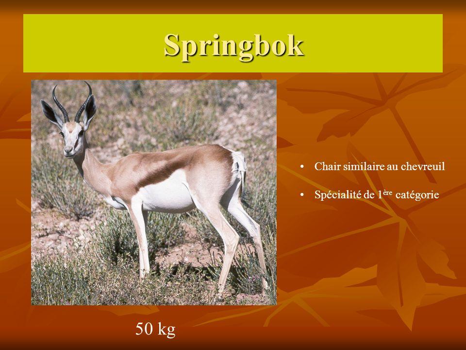 Springbok 50 kg Chair similaire au chevreuil