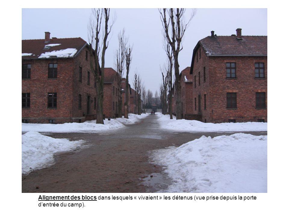 Alignement des blocs dans lesquels « vivaient » les détenus (vue prise depuis la porte d'entrée du camp).