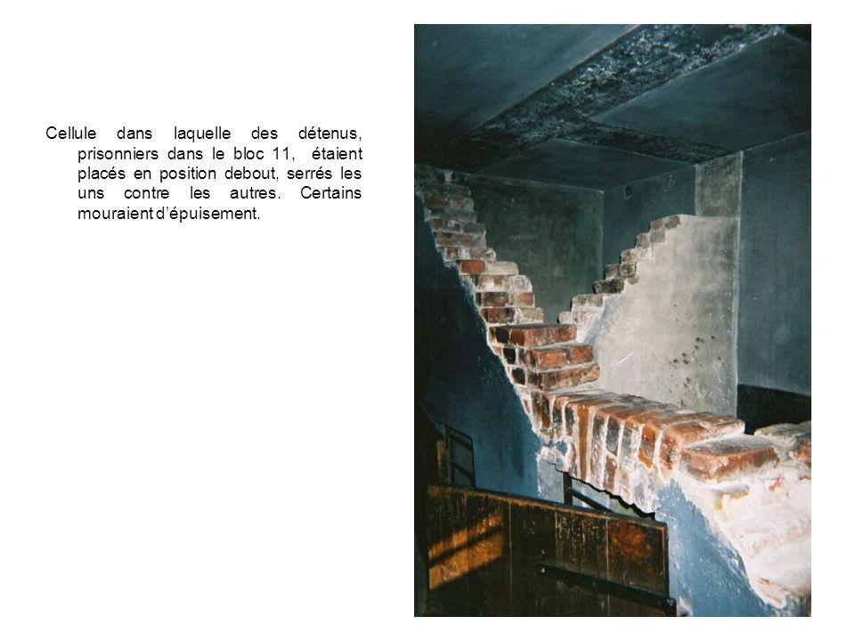 Cellule dans laquelle des détenus, prisonniers dans le bloc 11, étaient placés en position debout, serrés les uns contre les autres.