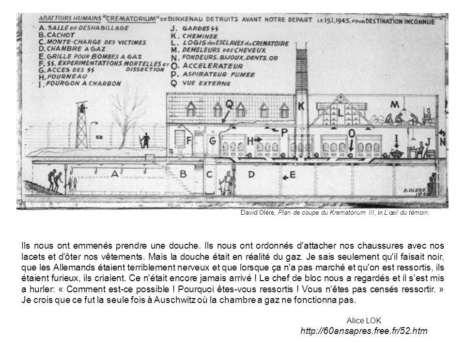 David Olère, Plan de coupe du Krematorium III, in L'œil du témoin.