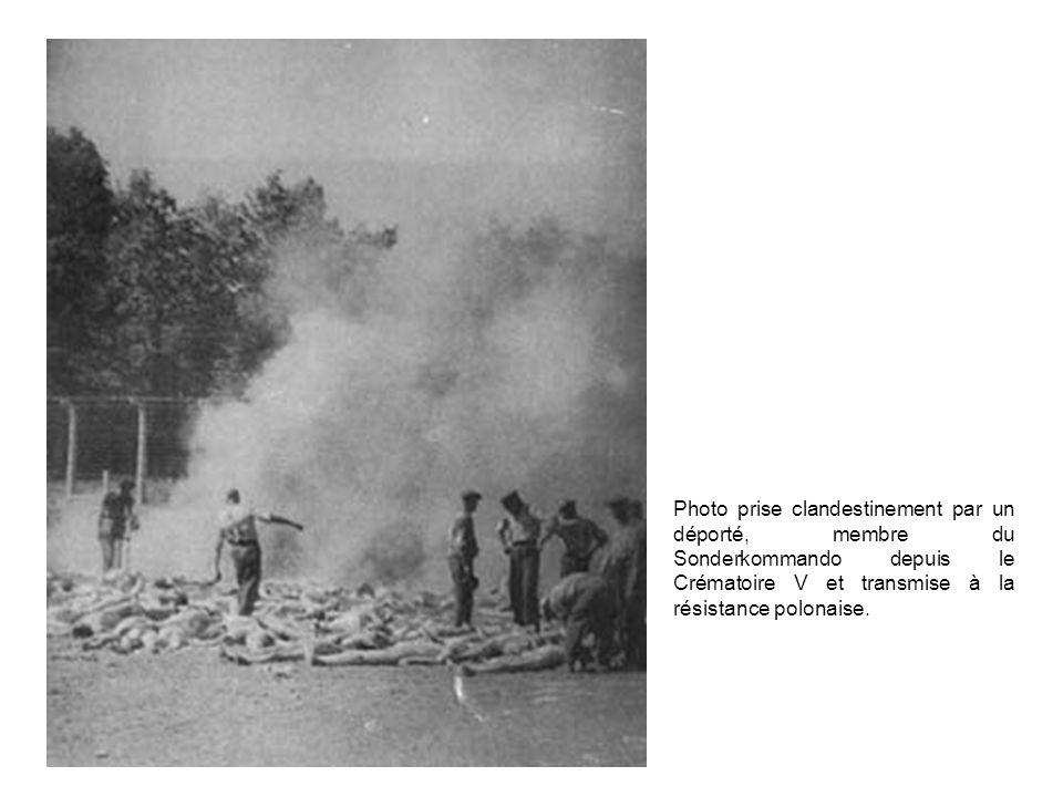 Photo prise clandestinement par un déporté, membre du Sonderkommando depuis le Crématoire V et transmise à la résistance polonaise.