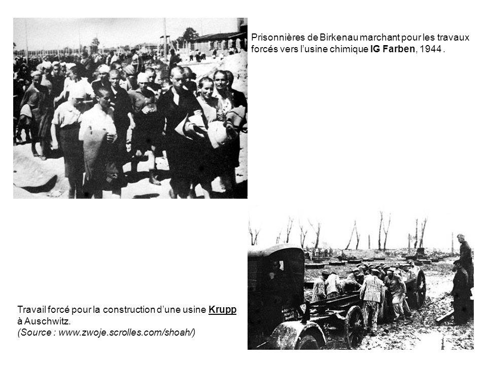 Prisonnières de Birkenau marchant pour les travaux forcés vers l'usine chimique IG Farben, 1944 .