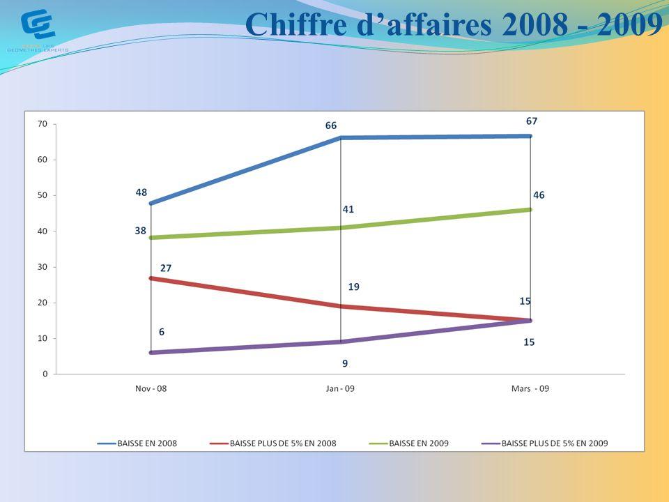 Chiffre d'affaires 2008 - 2009