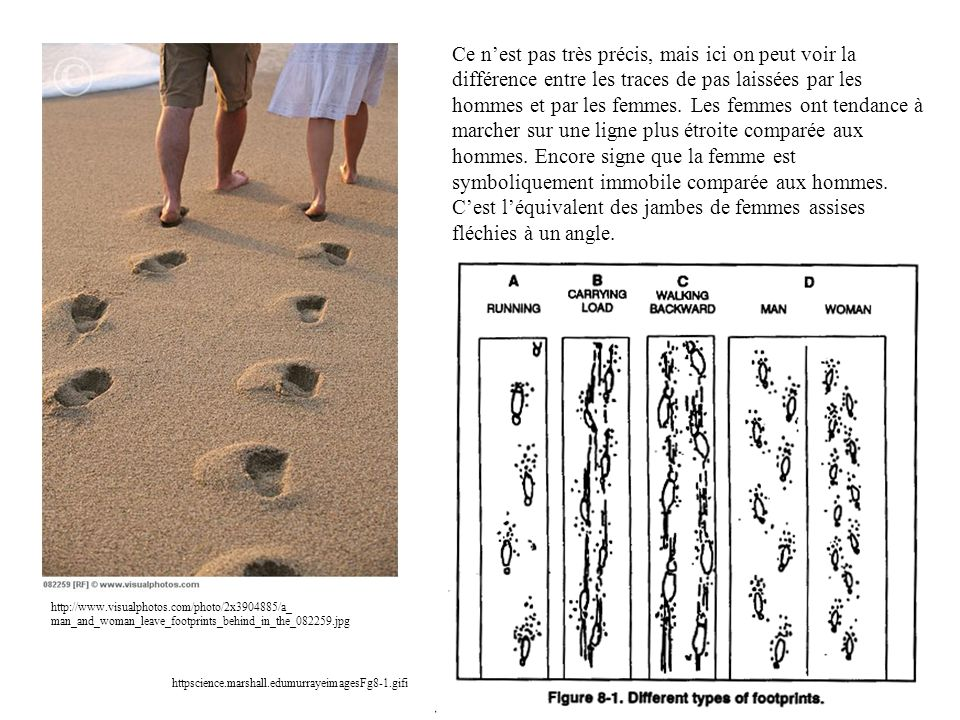 Ce n'est pas très précis, mais ici on peut voir la différence entre les traces de pas laissées par les hommes et par les femmes. Les femmes ont tendance à marcher sur une ligne plus étroite comparée aux hommes. Encore signe que la femme est symboliquement immobile comparée aux hommes. C'est l'équivalent des jambes de femmes assises fléchies à un angle.
