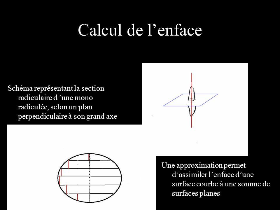 Calcul de l'enface Schéma représentant la section radiculaire d 'une mono radiculée, selon un plan perpendiculaire à son grand axe.