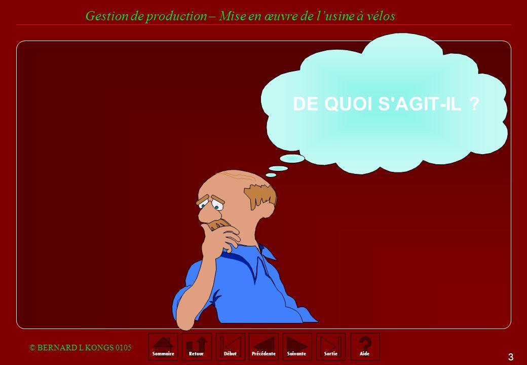 DE QUOI S AGIT-IL © BERNARD L KONGS 0105