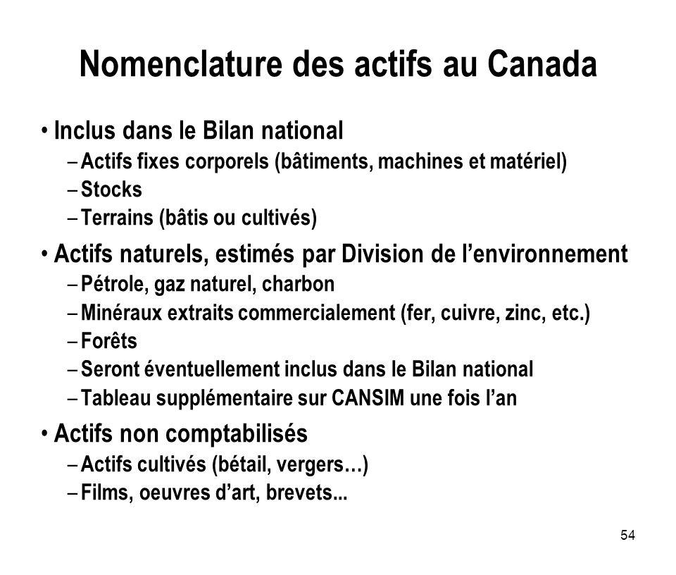 Nomenclature des actifs au Canada