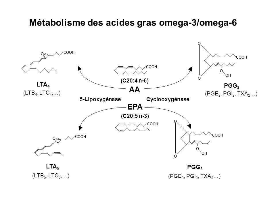 Métabolisme des acides gras omega-3/omega-6