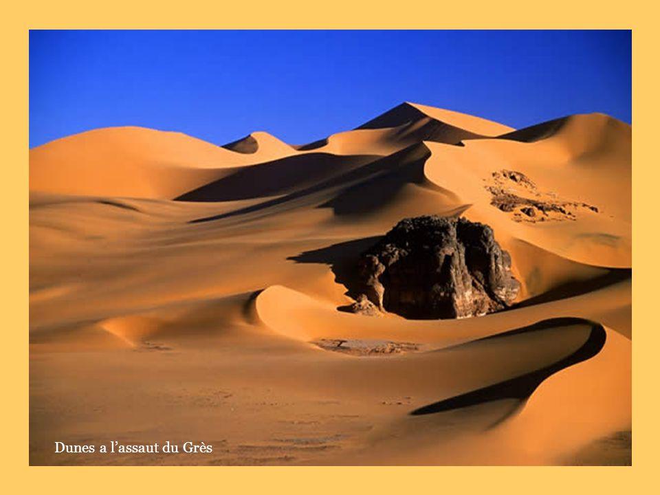 Dunes a l'assaut du Grès