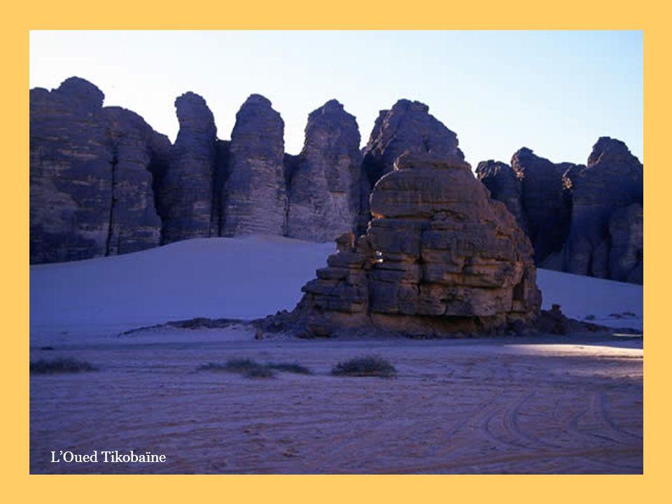 L'Oued Tikobaïne