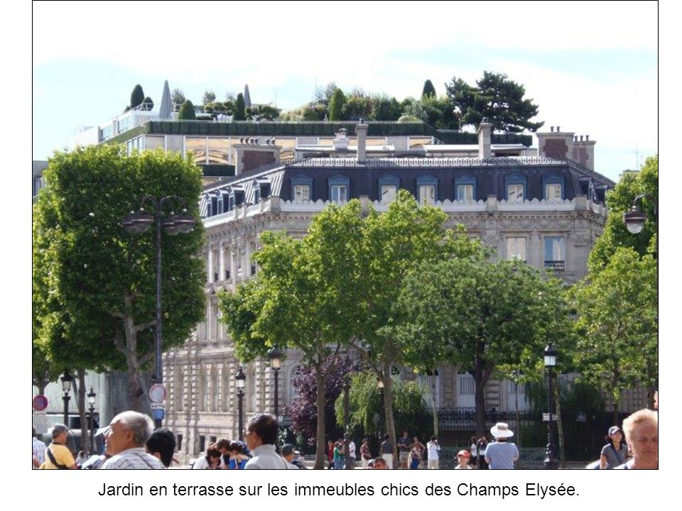 Jardin en terrasse sur les immeubles chics des Champs Elysée.