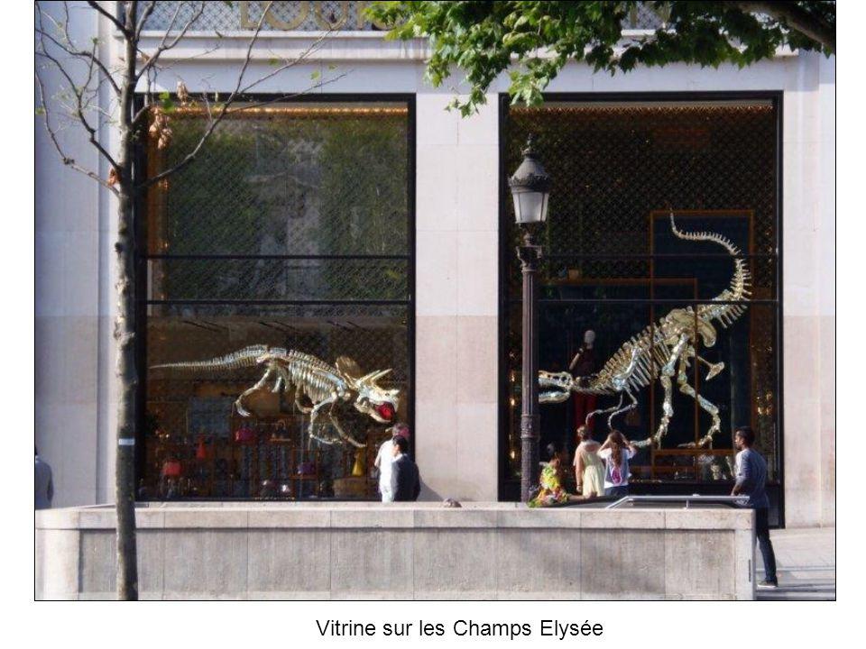 Vitrine sur les Champs Elysée