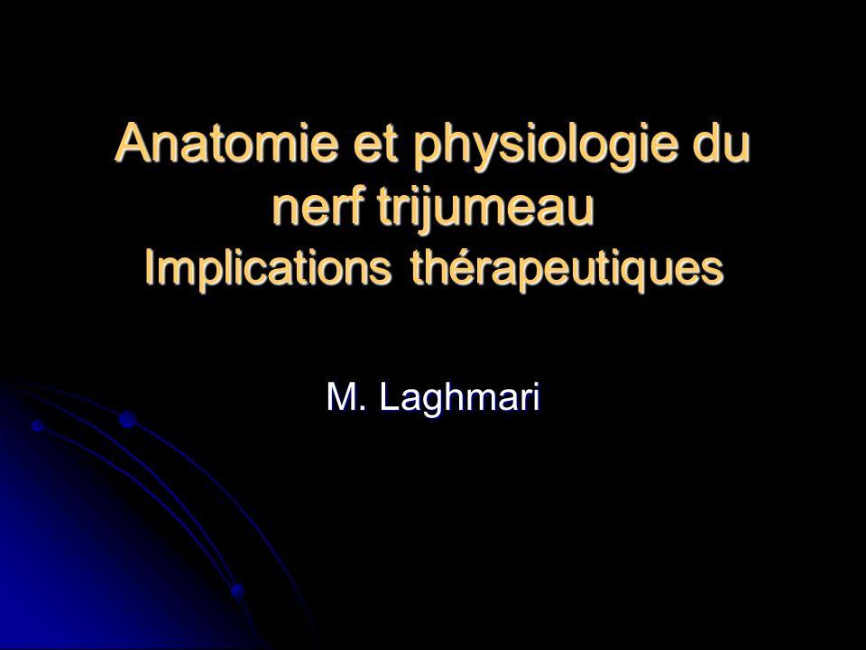 Anatomie et physiologie du nerf trijumeau Implications thérapeutiques