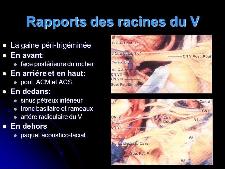 Rapports des racines du V