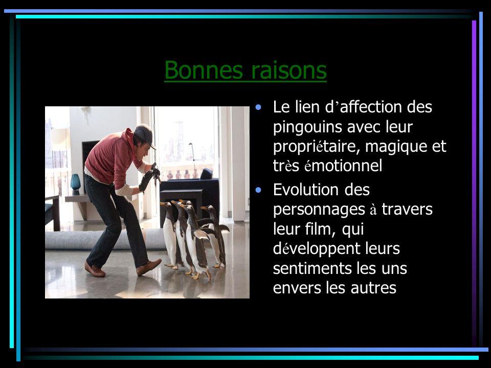 Bonnes raisonsLe lien d'affection des pingouins avec leur propriétaire, magique et très émotionnel.