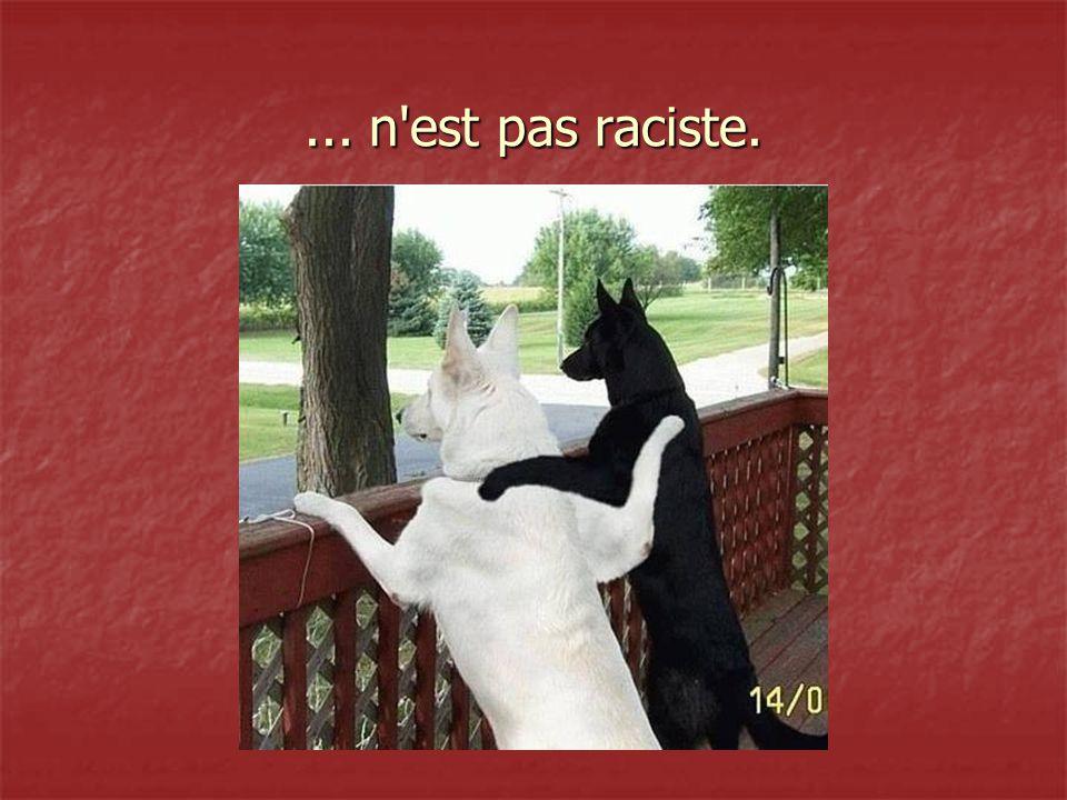 ... n est pas raciste.