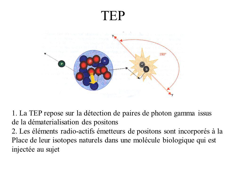 TEP 1. La TEP repose sur la détection de paires de photon gamma issus
