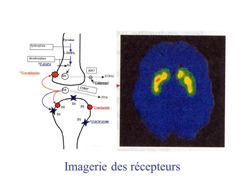 Imagerie des récepteurs