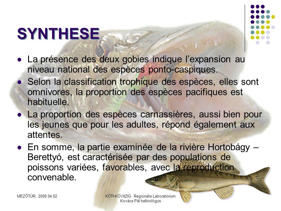 SYNTHESELa présence des deux gobies indique l'expansion au niveau national des espèces ponto-caspiques.