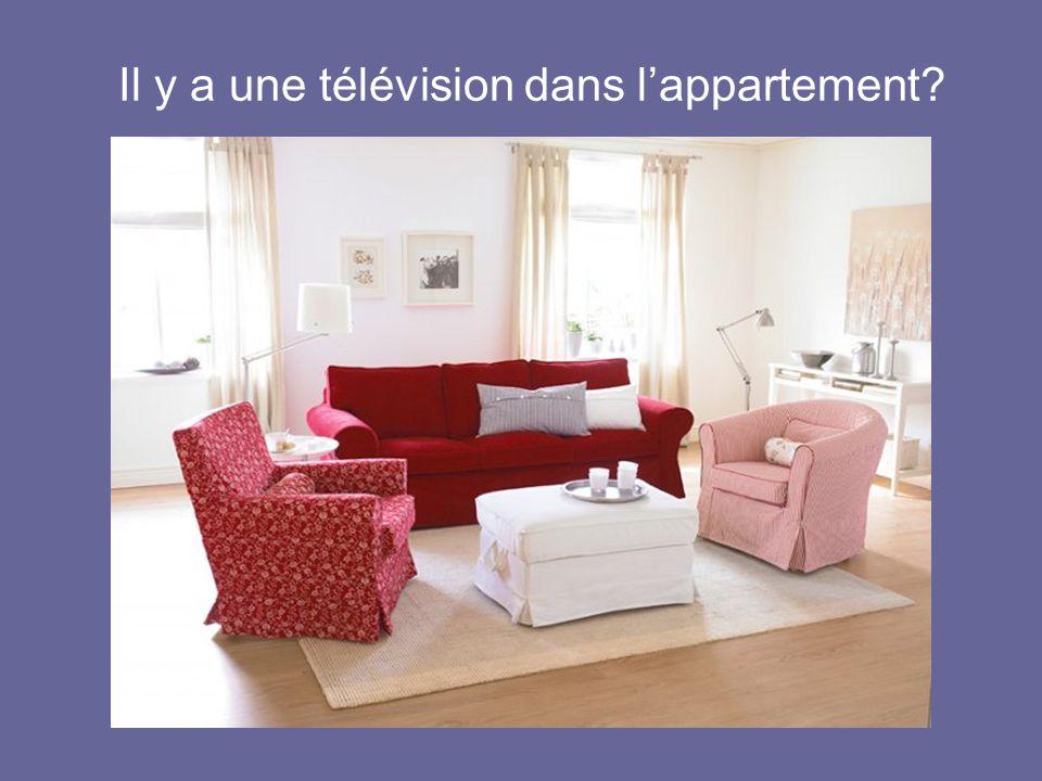 Il y a une télévision dans l'appartement