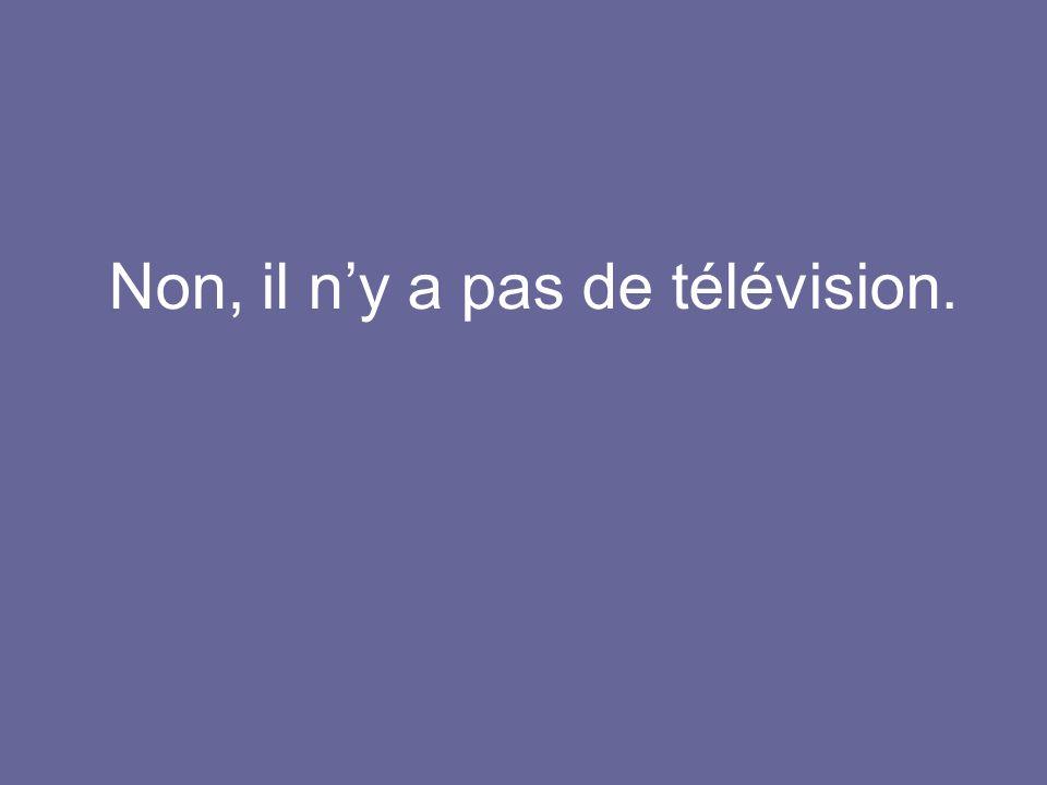 Non, il n'y a pas de télévision.