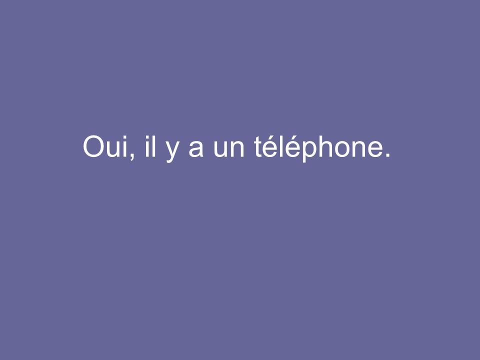 Oui, il y a un téléphone.
