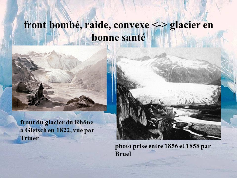 front bombé, raide, convexe <-> glacier en bonne santé