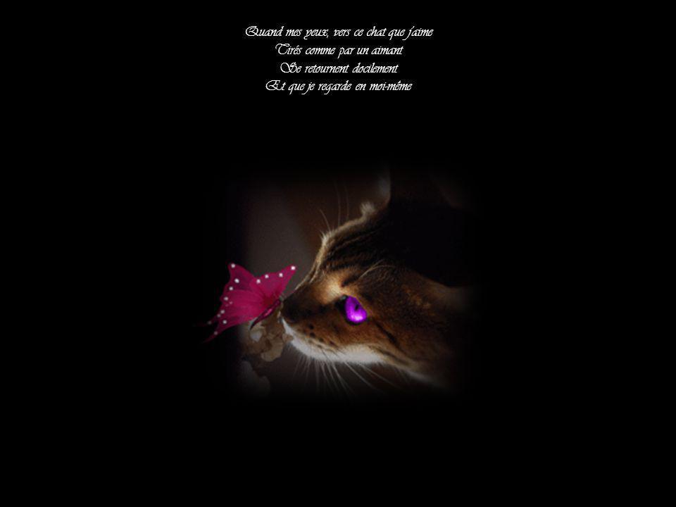 Quand mes yeux, vers ce chat que j aime Tirés comme par un aimant