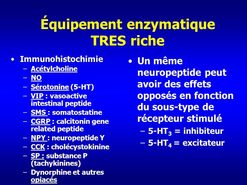 Équipement enzymatique TRES riche