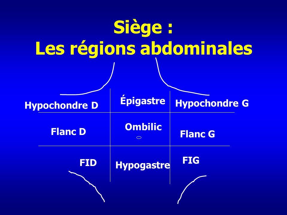 Siège : Les régions abdominales