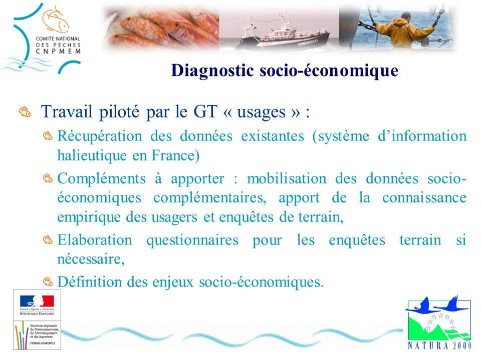 Diagnostic socio-économique