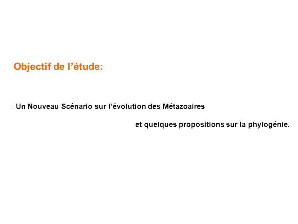 Objectif de l'étude: Un Nouveau Scénario sur l'évolution des Métazoaires.