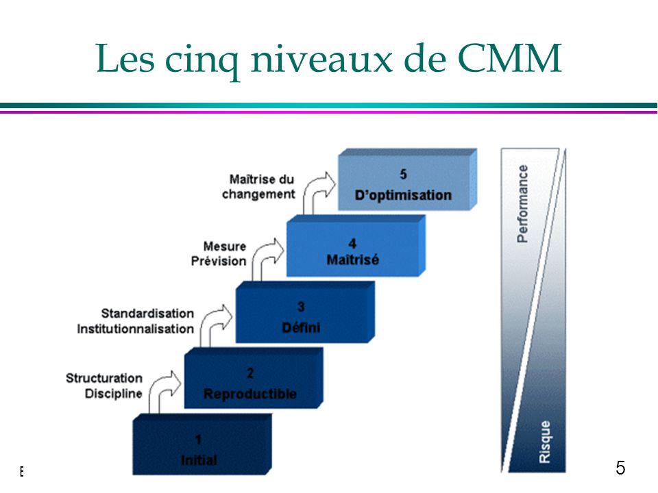 Les cinq niveaux de CMM
