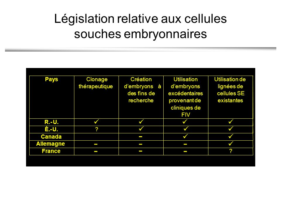 Législation relative aux cellules souches embryonnaires