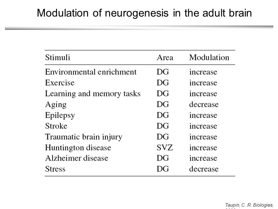 Modulation of neurogenesis in the adult brain