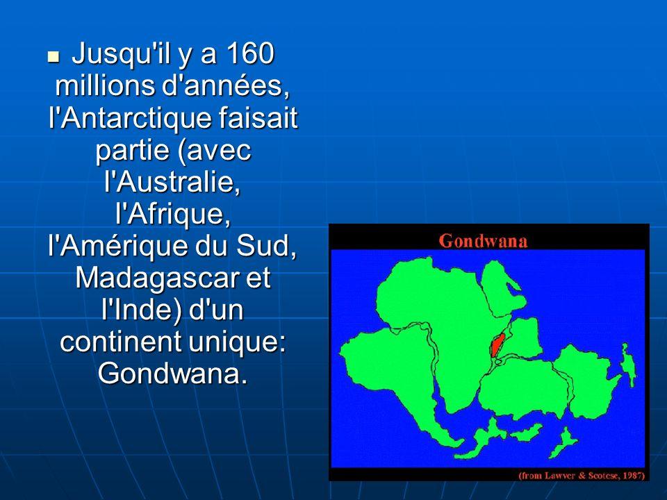 Jusqu il y a 160 millions d années, l Antarctique faisait partie (avec l Australie, l Afrique, l Amérique du Sud, Madagascar et l Inde) d un continent unique: Gondwana.
