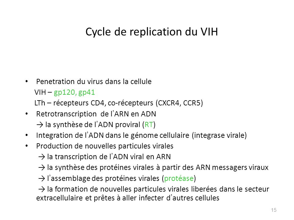 Cycle de replication du VIH