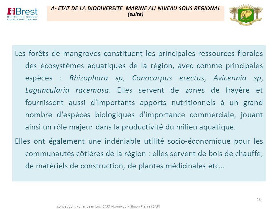 A- ETAT DE LA BIODIVERSITE MARINE AU NIVEAU SOUS REGIONAL (suite)