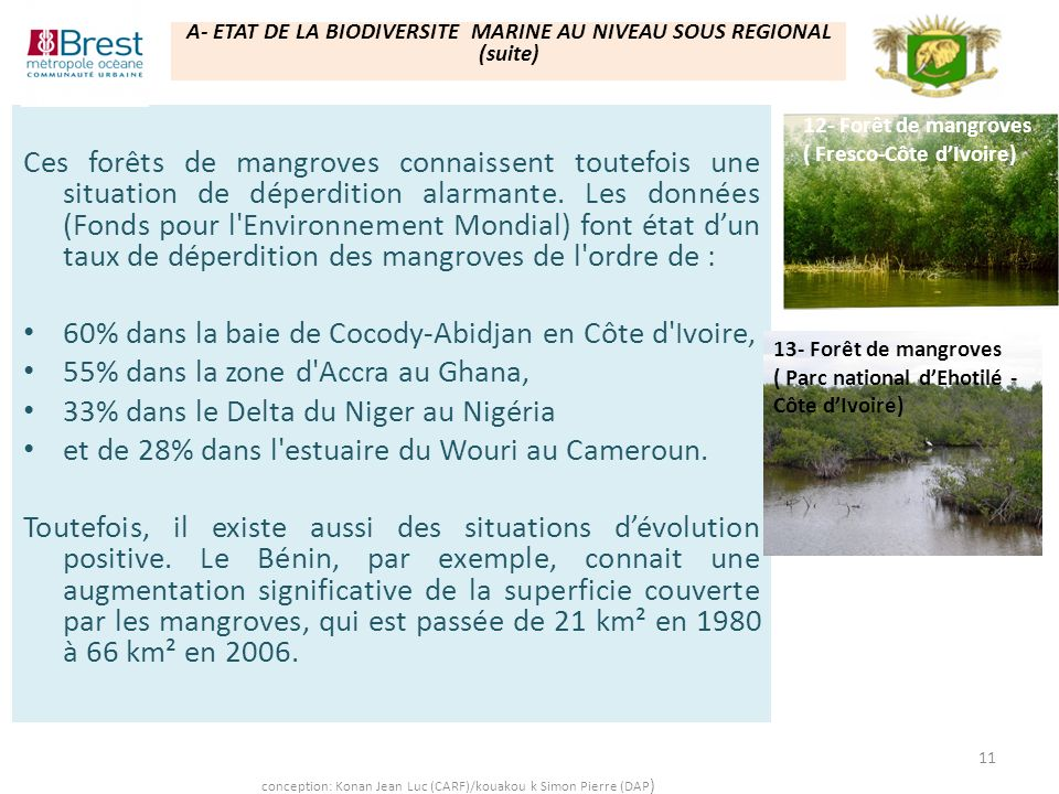 60% dans la baie de Cocody-Abidjan en Côte d Ivoire,