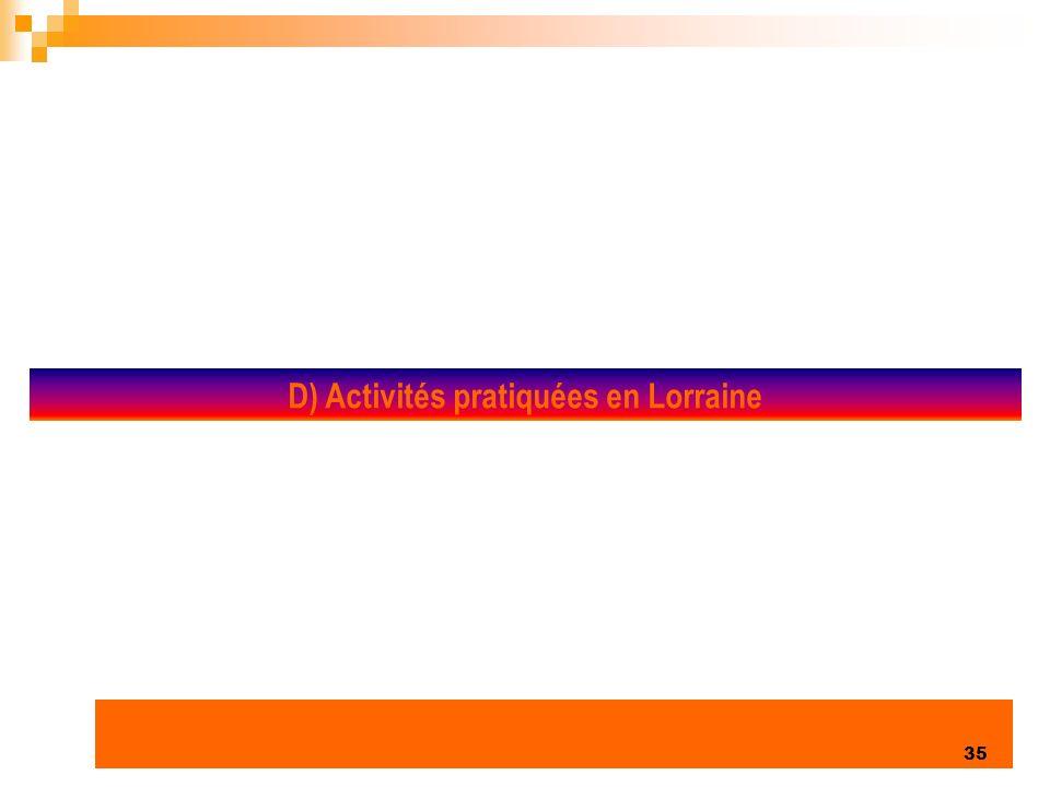 D) Activités pratiquées en Lorraine