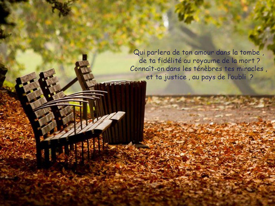 Qui parlera de ton amour dans la tombe , de ta fidélité au royaume de la mort .