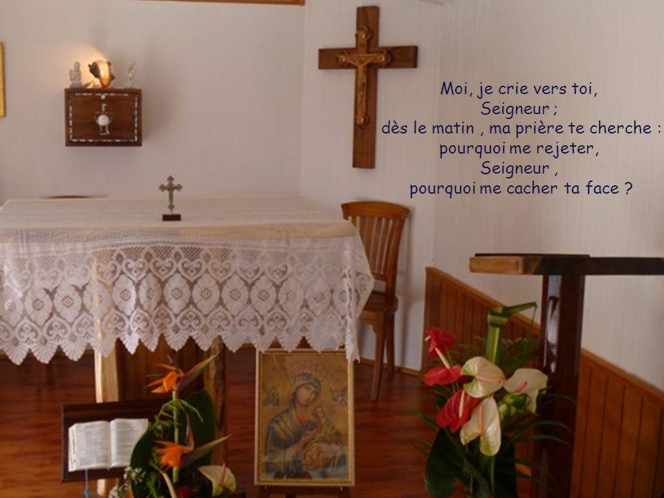 Moi, je crie vers toi, Seigneur ; dès le matin , ma prière te cherche : pourquoi me rejeter, Seigneur , pourquoi me cacher ta face