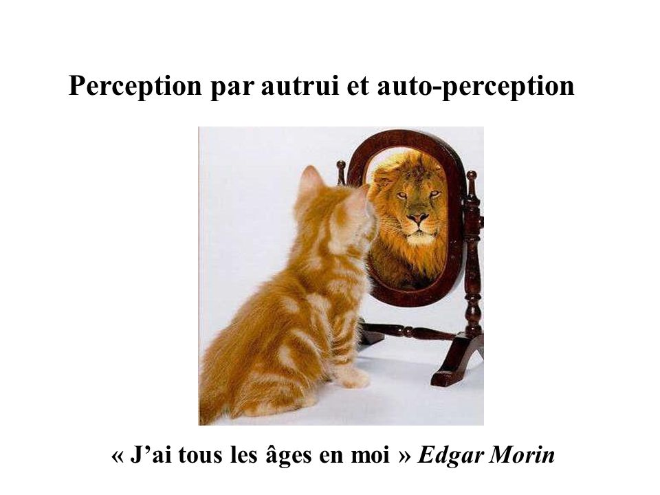 Perception par autrui et auto-perception
